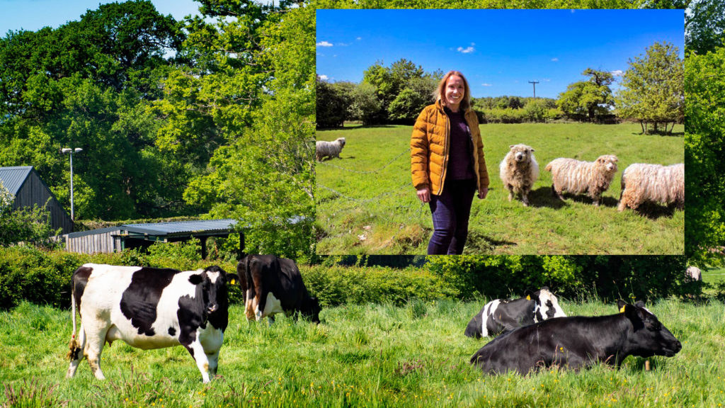 Helen Morgan reacted angrily to the news that Owen Paterson MP hadn't voted to support British Farmers. Helen is pictured supporting Helen supporting rare-breed farming in 2019